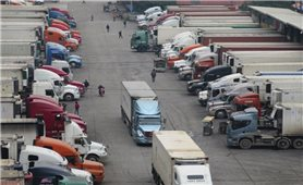 Mỗi ngày, xuất khẩu hơn 4.000 tấn nông sản qua cửa khẩu Tân Thanh