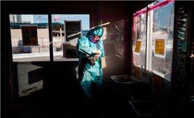 Nghiêm cấm việc đưa người lao động Việt Nam đi làm việc tại các khu vực bị nhiễm xạ