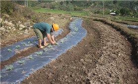 """Triển khai Dự án """"Quản lý tài nguyên thiên nhiên bền vững"""" : Góp phần giảm nghèo hiệu quả"""