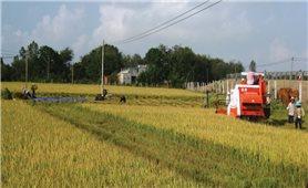 Xây dựng nông thôn mới gặp khó do hậu quả bão lũ