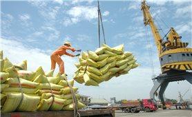 Xuất khẩu nông sản: Tín hiệu vui những tháng đầu năm
