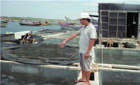 Làm giàu trên đảo Phú Quý
