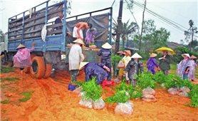 Quyết tâm giảm nghèo ở Tây Trà