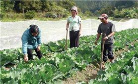 Nâng cao chất lượng cán bộ phụ trách công tác giảm nghèo