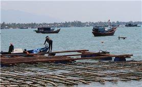 Ngư dân Việt tự tin với công nghệ Na Uy