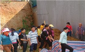 """Đào tạo nghề cho lao động nông thôn ở Thanh Hóa: Vẫn còn kiểu """"đánh trống ghi tên"""""""