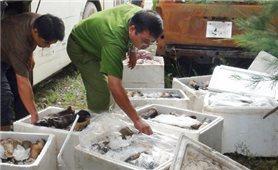 Dùng hóa chất tẩy trắng nội tạng bò ở Đồng Nai
