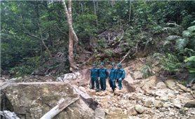Đối mặt nhiều áp lực, nhân viên bảo vệ rừng đồng loạt xin nghỉ việc