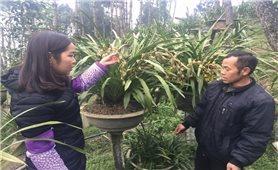 Hàng trăm hộ dân ở Tả Phìn xin ra khỏi diện hộ nghèo
