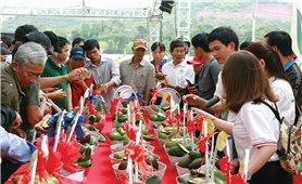 Đăk Nông: Đưa thương hiệu bơ Việt Nam vươn ra thế giới