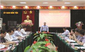 Ủy ban Dân tộc: Tích cực triển khai Chính phủ điện tử