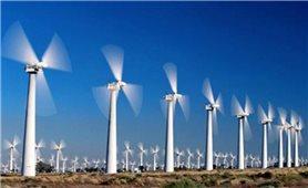 Thêm nhà máy điện gió hơn 3.000 tỷ đồng tại Trà Vinh