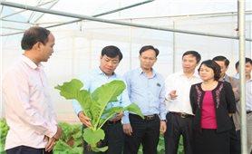 Dồn điền đổi thửa , ứng dụng công nghệ vào sản xuất ở Hiệp Hòa (Bắc Giang): Tạo động lực xây dựng nông thôn mới