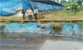 Đồng Nai: Nhiều sông suối bị ô nhiễm