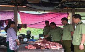 Lào Cai: Tăng cường ngăn chặn lợn nhập lậu qua biên giới