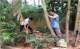 Lào Cai: Khắc phục vỡ đập nước thải Nhà máy hóa chất DAP số 2
