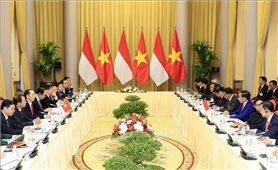 Chủ tịch nước hội đàm với Tổng thống Indonesia