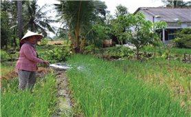 Đổi thay trên quê hương Long Phú