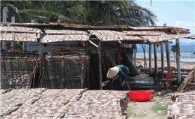 Làng biển An Quang Tây: Ô nhiễm nặng vì nghề sơ chế mực xà