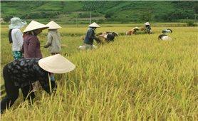 BĐBP Hà Giang thực hiện Chỉ thị 05 của Bộ Chính trị: Nhân rộng nhiều việc làm thiết thực, vì dân