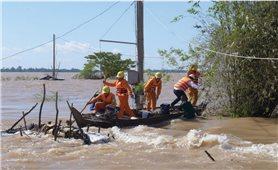 Đồng bằng Sông cửu Long: Người dân chủ quan với nguy cơ điện giật