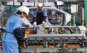 Quảng Trị: Thị trường xuất khẩu lao động bị thả nổi