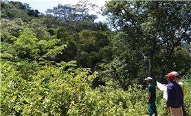Lấy dân làm gốc để bảo vệ rừng