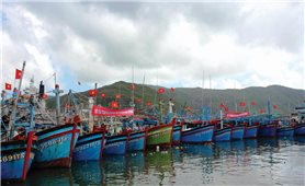Bình Định: Ngăn chặn ngư dân vi phạm vùng biển nước ngoài
