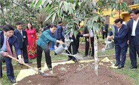 Chủ tịch Quốc hội trồng cây lưu niệm tại Khu Di tích Chủ tịch Hồ Chí Minh