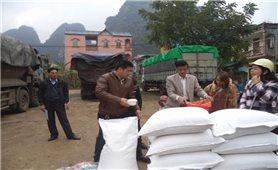 Cấp gạo cứu đói mùa giáp hạt: Chỉ là giải pháp tạm thời