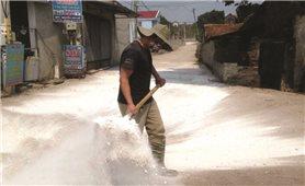Bắc Giang: Triển khai nhiều giải pháp ngăn chặn dịch tả lợn châu Phi
