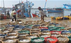 Làng cá Cà Ná thời hội nhập