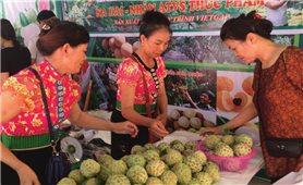 Nông sản Sơn La: Tìm chỗ đứng ở thị trường quốc tế