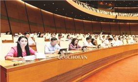 Kỳ họp thứ 8, Quốc hội khóa XIV: Thảo luận về công tác cán bộ