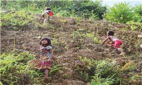 Báo động về tỷ lệ tử vong trẻ dưới 5 tuổi ở Điện Biên Đông