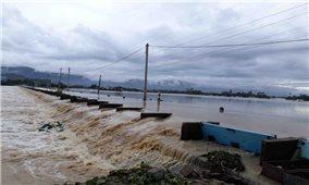 Quảng Ngãi, Bình Định, Phú Yên thiệt hại hàng trăm tỷ đồng sau bão số 5