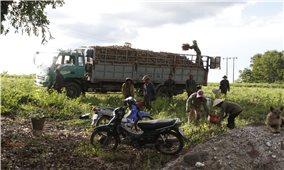 Khánh Vĩnh (Khánh Hòa): Nâng cao đời sống người dân từ thực hiện hiệu quả chính sách dân tộc