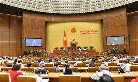 Kỳ họp thứ 9, Quốc hội khóa XIV: Hỗ trợ các doanh nghiệp có quy mô nhỏ vượt qua khó khăn