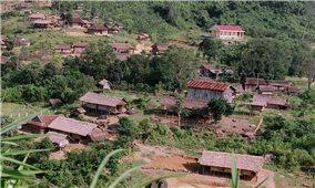 Giữ nếp làng ở Ngọc Tem