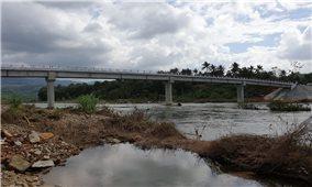 Những cây cầu nối nhịp mùa Xuân