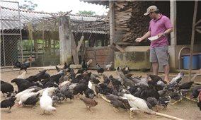 Trà Bồng (Quảng Ngãi): Thực hiện hiệu quả Nghị quyết của Đảng để thoát khỏi huyện nghèo