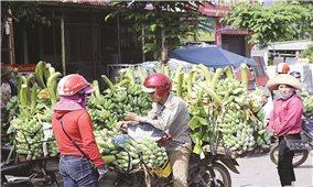 Hướng Hóa (Quảng Trị): Tập trung giảm nghèo bền vững cho đồng bào DTTS