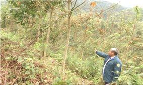 Chuyển đổi đất dự án: Cần giải quyết hài hòa lợi ích doanh nghiệp và người dân