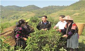 Băn khoăn chuyện giảm nghèo ở Điện Biên