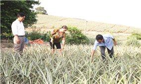Diện mạo mới ở vùng DTTS Bắc Giang
