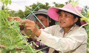 Phát triển vùng đồng bào DTTS ở Trà Vinh: Lồng ghép nguồn lực để nâng cao hiệu quả đầu tư