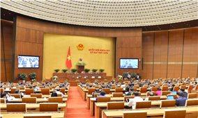 """Quốc hội phê chuẩn 2 Hiệp định """"mở ra chân trời"""" phát triển mới"""