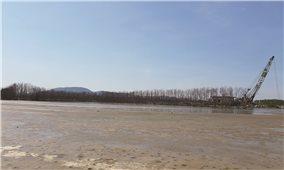 """""""Băm nát"""" rừng ngập mặn ở đầm Thị Nại để làm biệt thự du lịch: Đánh đổi môi trường lấy kinh tế?"""