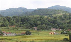 Đảng bộ Huyện Văn Quan (Lạng Sơn): Tập trung 3 khâu đột phá chiến lược