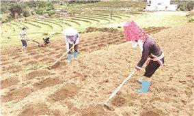 Giảm nghèo bền vững - Nhìn lại một chặng đường: Nhận diện yếu tố then chốt ( Bài cuối )